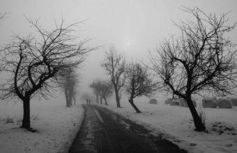 Roads In Winter 2500 x 1562 340x220