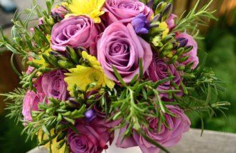 Roses Freesia Purple 2040 x 1330 340x220