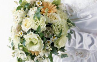 Roses Gerbera Daisies 1280 x 1024 340x220