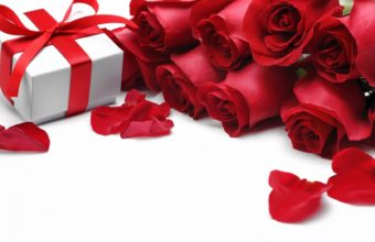Roses Red Roses Gift 1680 x 1050 340x220