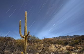 Saguaro National Park Tucson Arizona 3600 x 2400 340x220