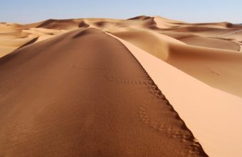 Sea Of Sand 1920 x 1200 340x220