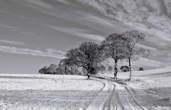 Serene Winter Scene Hdr 1920 x 1080 340x220