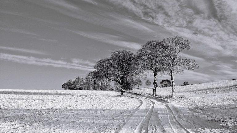 Serene Winter Scene Hdr 1920 x 1080 768x432