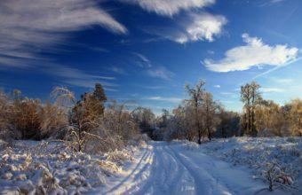 Sky Winter Snow Road 2560 x 1600 1 340x220