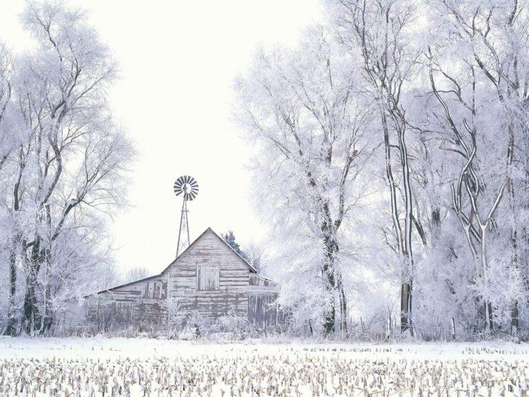 Snow House 1600 X 1200 768x576
