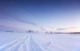 Snow Winter Field 2560 X 1600 340x220