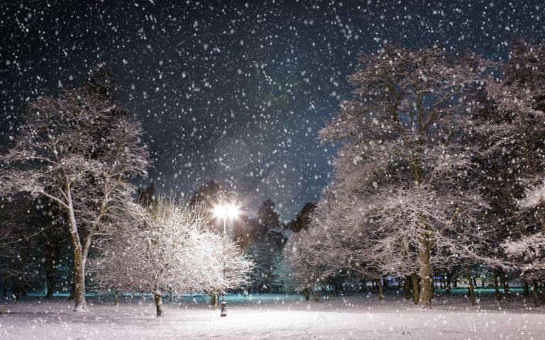 Snowfall Wallpapers 02 2560 x 1600 768x480