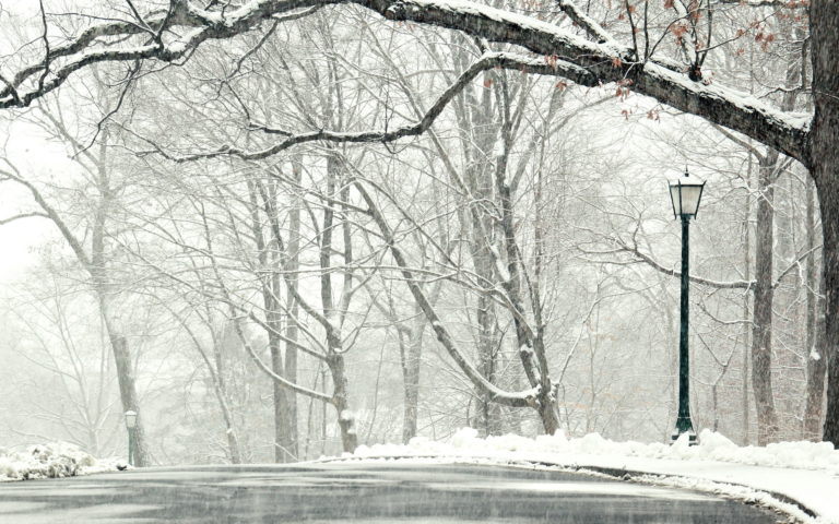 Snowfall Wallpapers 03 1920 x 1200 768x480