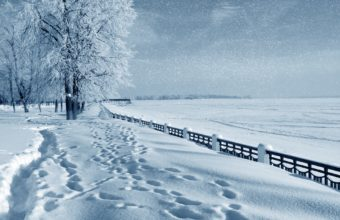 Snowfall Wallpapers 08 3629 x 2592 340x220