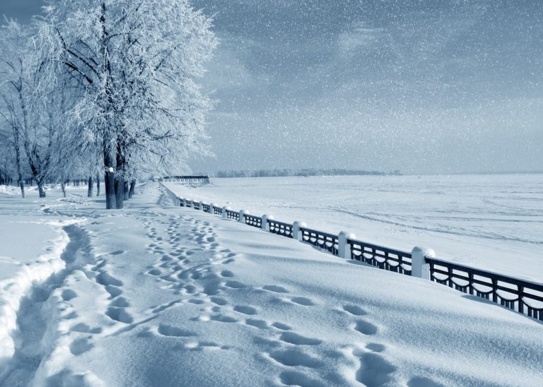 Snowfall Wallpapers 08 3629 x 2592 768x548