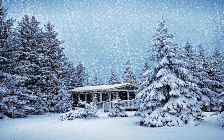 Snowfall Wallpapers 14 1440 x 900 768x480