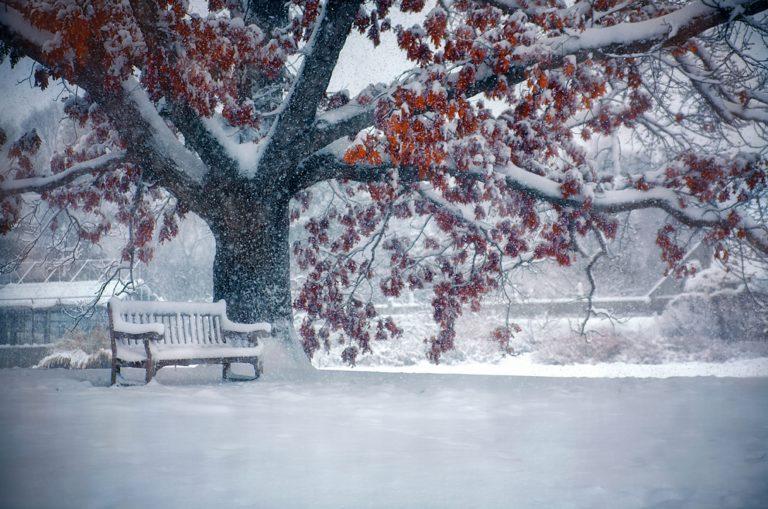 Snowfall Wallpapers 20 2048 x 1358 768x509