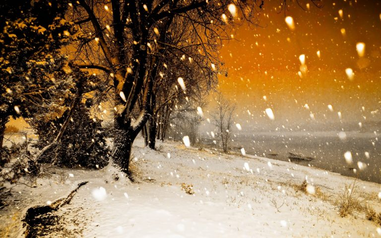 Snowfall Wallpapers 23 2560 x 1602 768x481