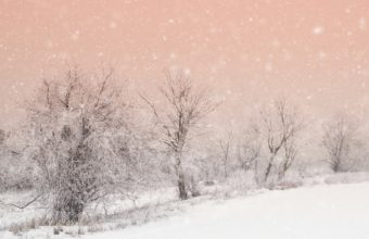 Snowfall Wallpapers 25 2048 x 1365 340x220