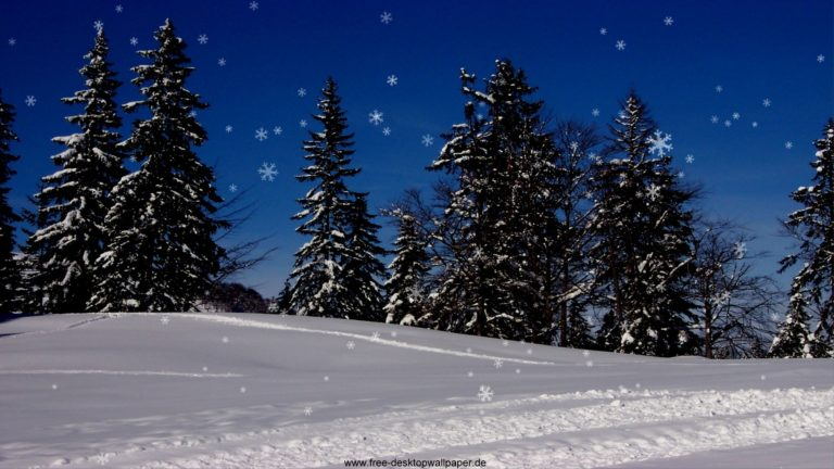 Snowfall Wallpapers 30 1920 x 1080 768x432