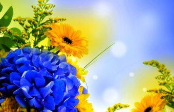 Spring Petals 2560 x 1600 340x220