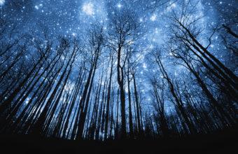 Stars Wallpapers 04 1920 x 1080 340x220