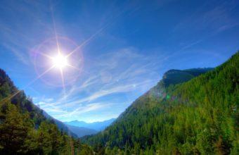 Sun Light Wood 2560 x 1440 340x220