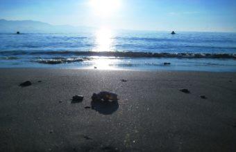 Sun Sea Light 2560 x 1600 340x220