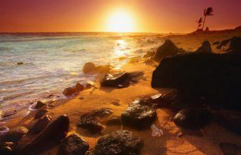 Sunset Landscapes Nature Beach 2560 x 1440 340x220