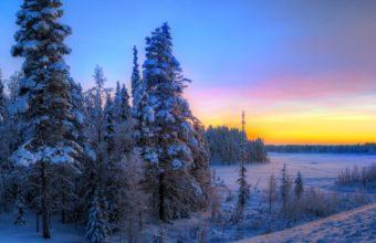 Sunset Winter Trees 2525 x 1716 340x220