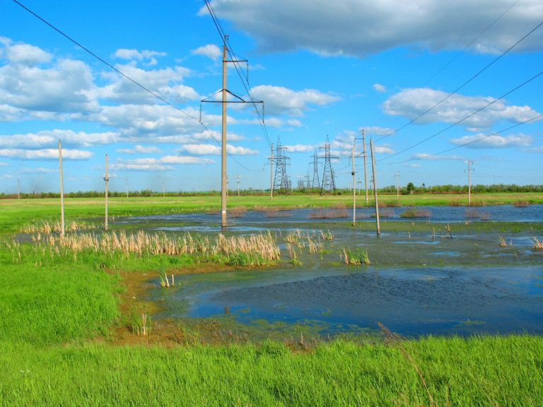 Swamp Electricity High Voltage 3264 x 2448 768x576