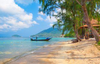 Thailand Nature Boat Beach Koh Tao 4787 x 3000 340x220