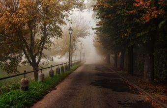 Trees Park Trail Path Fog Autumn Fall 1920 X 1200 340x220
