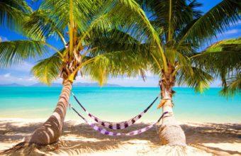 Tropics Sand Beach 1680 x 1050 340x220