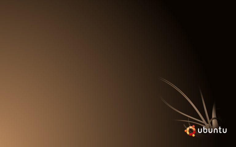 Ubuntu Wallpapers 17 2560 x 1600 768x480