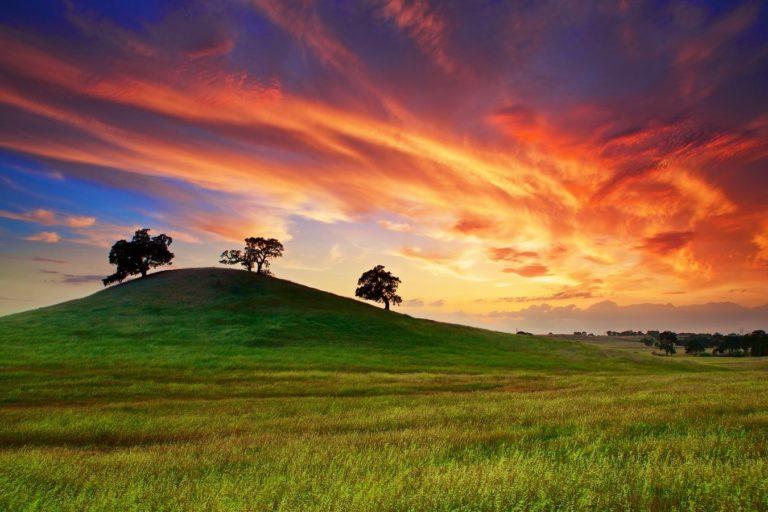 Usa California Sunset 1350 x 900 768x512
