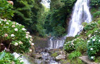 Waterfalls Portugal Achadinha Azores 2436 x 1827 340x220