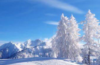 White Winter Morning 1920 X 1080 340x220