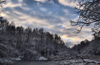 Winter Forest Lake 2035 x 1526 340x220