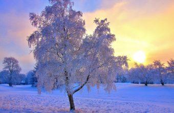 Winter Frost Snow 3200 X 2400 340x220