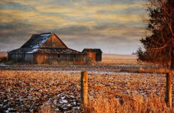 Winter Grass Sky 2560 x 1600 1 340x220