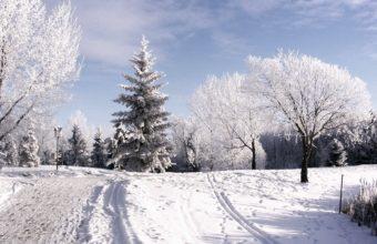 Winter Hoarfrost 1920 X 1200 340x220