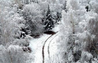 Winter Road Snow 1920 x 1080 1 340x220