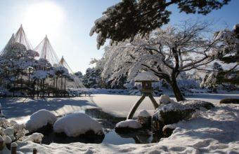 Winter Snow Garden 1920 x 1200 1 340x220