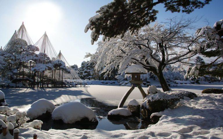 Winter Snow Garden 1920 x 1200 768x480