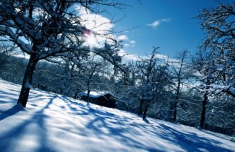 Winter Snow Home 1440 x 900 340x220