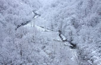 Winter Snow Landscape 1920 X 1280 340x220