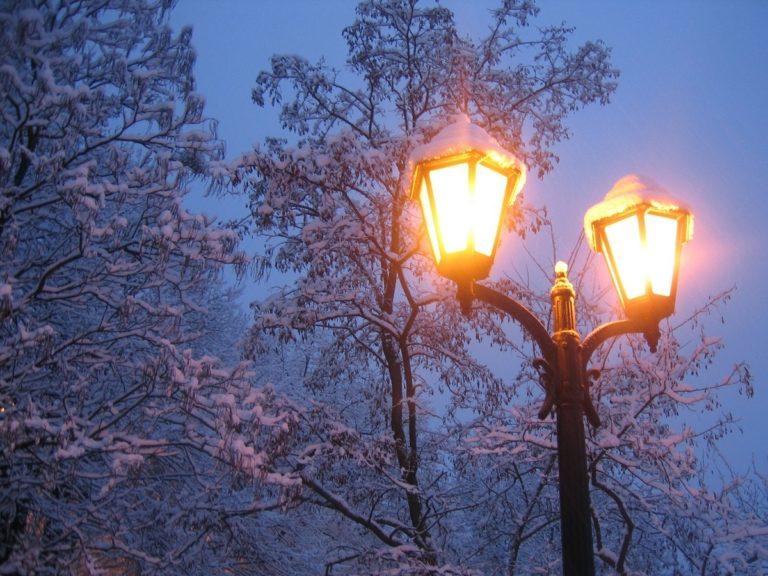 Winter Snow Light Trees 1200 x 900 768x576
