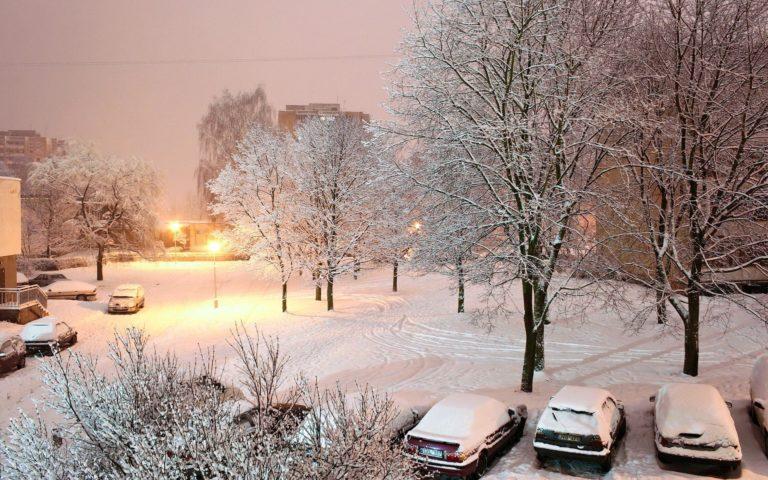 Winter Snow Yard 1920 x 1200 768x480