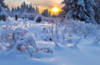 Winter Snowdrifts Cover 2560 x 1600 1 340x220