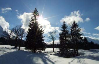 Winter Sun 1680 x 1050 340x220