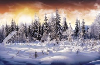 Wonderful Winter View 1920 x 1200 340x220
