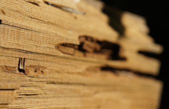 Wood Wallpapers 04 4592 x 3056 340x220