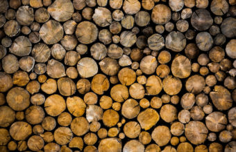 Wood Wallpapers 37 2048 x 1365 340x220